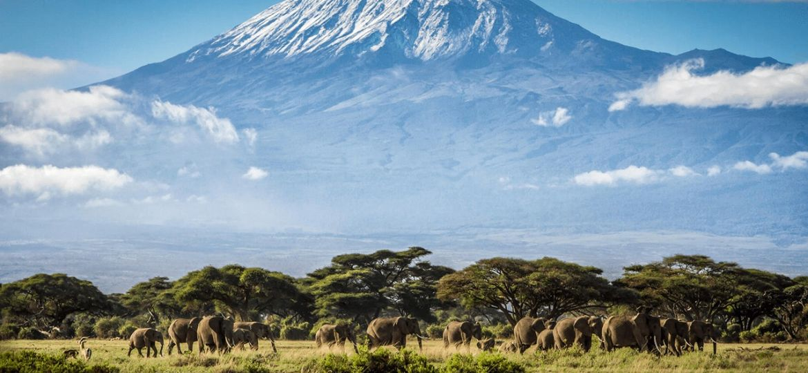 Mount-Kilimanjaro-Pictures-with-Safaris