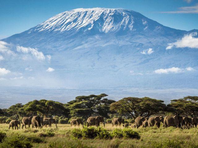 Mount-Kilimanjaro-Pictures-with-Safaris