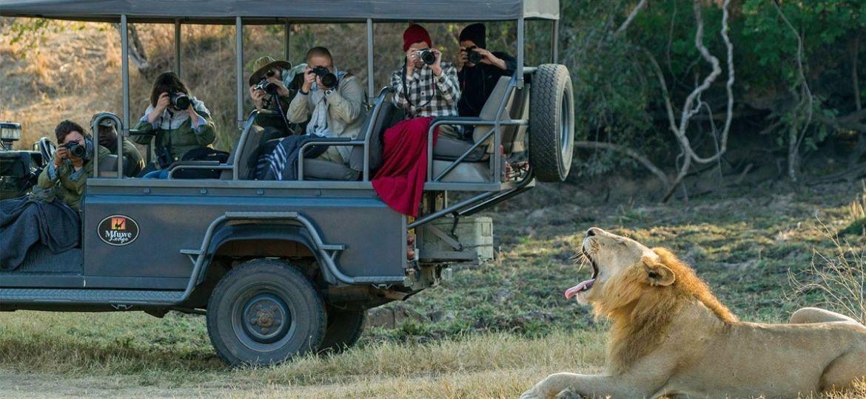 Safari and Adventure in Tanzania