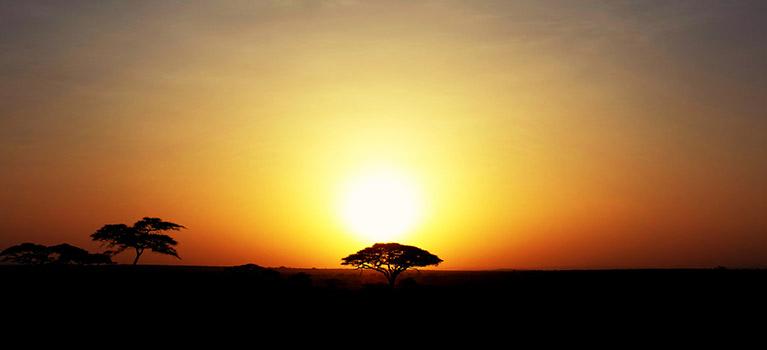 Tanzania- Honeymoon