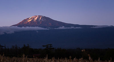 Mount-Kilimanjaro-National-Park-safaris